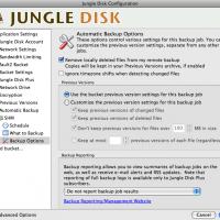 Jungle Disk - indstillinger for automatisk backup