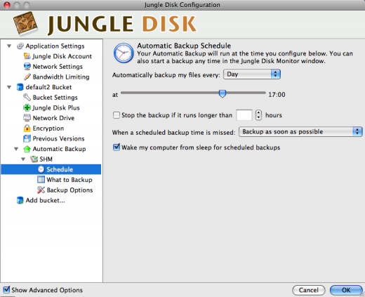 Jungle Disk - Interval for automatisk baclup