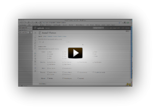 Screencast on WordPress 2.8